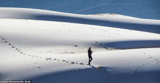 Ngỡ ngàng bộ ảnh tuyết phủ sa mạc Sahara đẹp như mơ ảnh 1