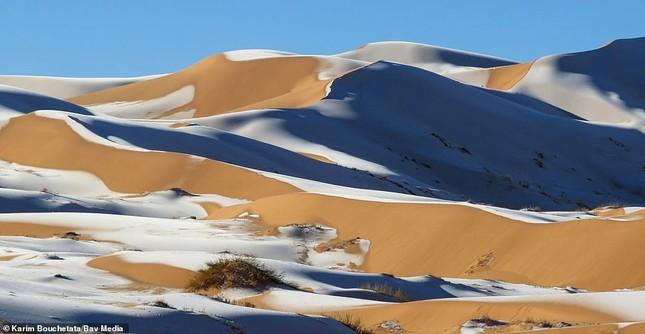Ngỡ ngàng bộ ảnh tuyết phủ sa mạc Sahara đẹp như mơ ảnh 2