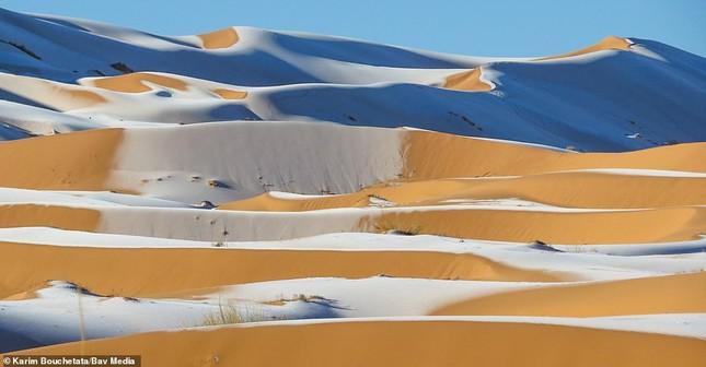Ngỡ ngàng bộ ảnh tuyết phủ sa mạc Sahara đẹp như mơ ảnh 5