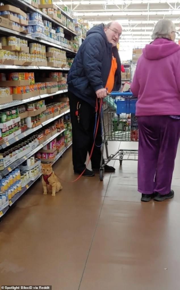 Dân mạng khắp thế giới chia sẻ những tình huống 'khó đỡ' trong siêu thị ảnh 9