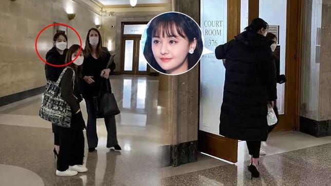 Trịnh Sảng sang Mỹ dự phiên tòa giành quyền nuôi con, hé lộ loạt tình tiết sốc ảnh 3