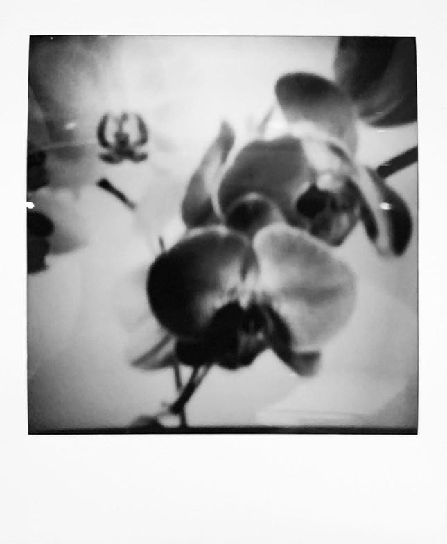 Nữ nhiếp ảnh gia bị tấn công tình dục tự 'chữa lành' bằng chụp ảnh khỏa thân ảnh 6