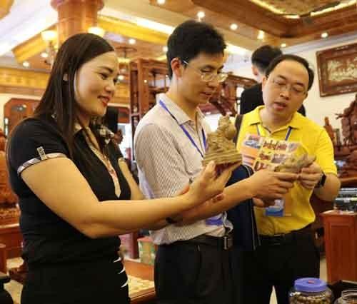 Đoàn đại biểu thanh niên Trung Quốc thăm đền Đô, làng tranh Đông Hồ ảnh 1