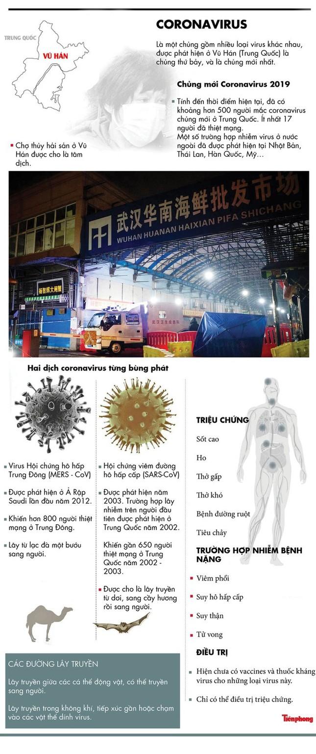 Việt Nam có ca bệnh nhưng chưa có công dân mắc virus corona ảnh 7