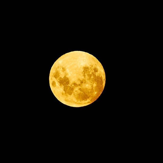 Giới trẻ khắp thế giới thích thú khoe ảnh chụp hiện tượng thiên văn thế kỷ: Siêu Trăng xanh máu ảnh 7
