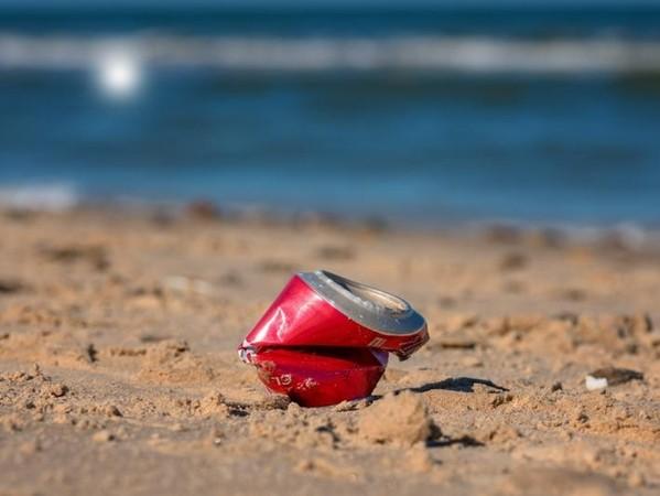 Rác thải dưới đại dương gây rất nhiều tác hại cho môi trường và sinh vật biển.