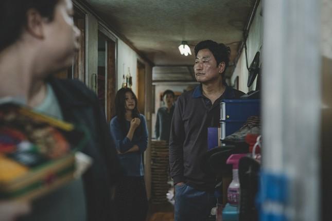 """Nhìn doanh thu của """"Ký Sinh Trùng"""", đừng nói khán giả Việt không thích phim nghệ thuật ảnh 2"""