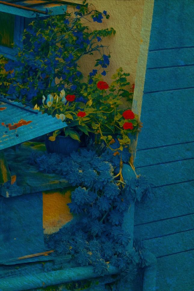 Bạn đã từng chiêm ngưỡng một Đà Lạt xinh đẹp qua những bức tranh sơn dầu? ảnh 1