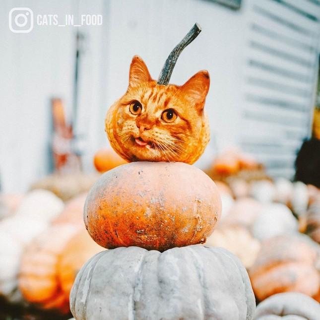 Tưởng đồ ăn ngon lễ Halloween, hóa ra là ảnh ghép đỉnh cao ảnh 1