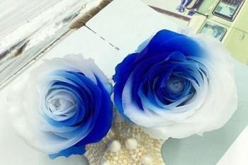Nhân dịp Valentine hãy tìm hiểu tình cảm hai bạn dành cho nhau sâu sắc đến mức nào? ảnh 3