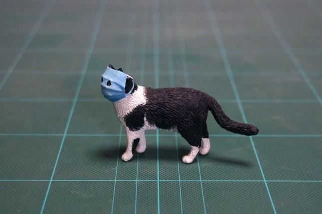 Ảnh chú mèo đeo khẩu trang giữa dịch virus corona gây bão mạng ảnh 3