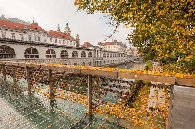 Khóa chặt tình yêu tại những cây cầu nổi tiếng nhất thế giới ảnh 7
