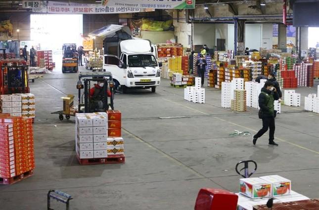 Người Hàn ồ ạt mua khẩu trang, siêu thị cháy hàng trong tâm dịch ảnh 7