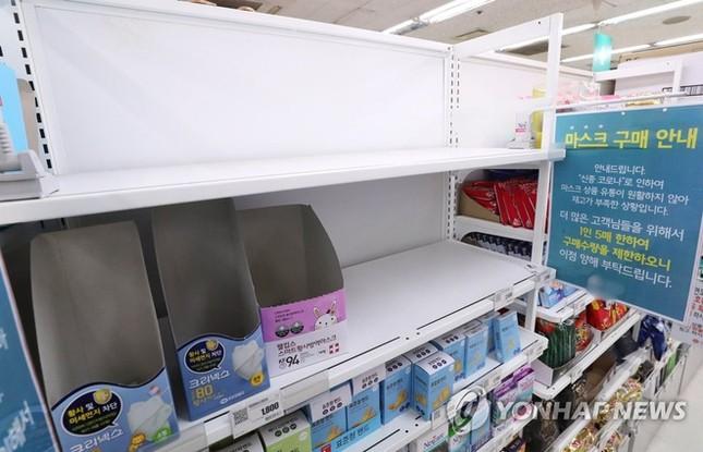 Người Hàn ồ ạt mua khẩu trang, siêu thị cháy hàng trong tâm dịch ảnh 8
