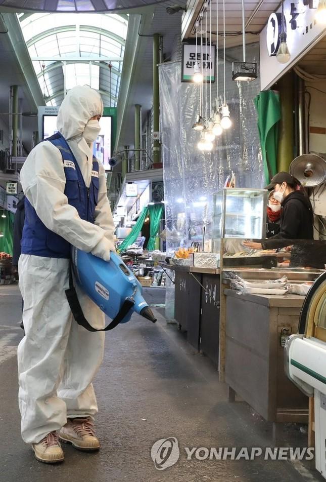 Người Hàn ồ ạt mua khẩu trang, siêu thị cháy hàng trong tâm dịch ảnh 17