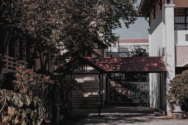 Ngất xỉu với khung cảnh đẹp như một giấc mộng đêm Hè của trường THPT Chuyên Thăng Long - Đà Lạt ảnh 16