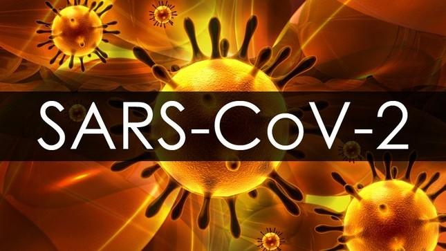 """""""Vắc xin"""" giữa tâm dịch SARS-COV-2: Chẳng ai khác ngoài chính chúng ta ảnh 3"""