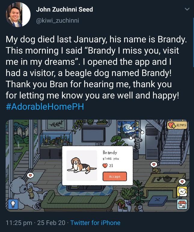 Hơn cả một tựa game, Adorable Home còn là câu chuyện xúc động giữa chàng trai và cún cưng vừa mất ảnh 2