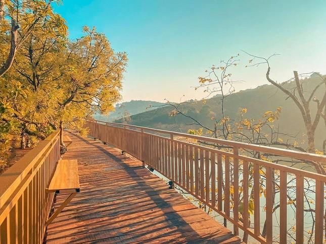 """Xác định tọa độ """"con đường ngôn tình"""" đẹp mộng mơ, được ví như """"Little Korea"""" ở Đà Lạt ảnh 1"""