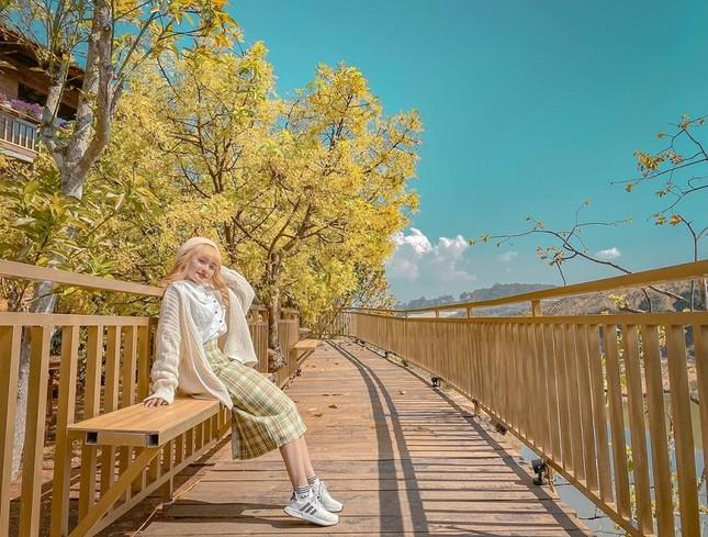 """Xác định tọa độ """"con đường ngôn tình"""" đẹp mộng mơ, được ví như """"Little Korea"""" ở Đà Lạt ảnh 3"""