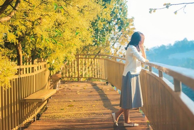 """Xác định tọa độ """"con đường ngôn tình"""" đẹp mộng mơ, được ví như """"Little Korea"""" ở Đà Lạt ảnh 6"""