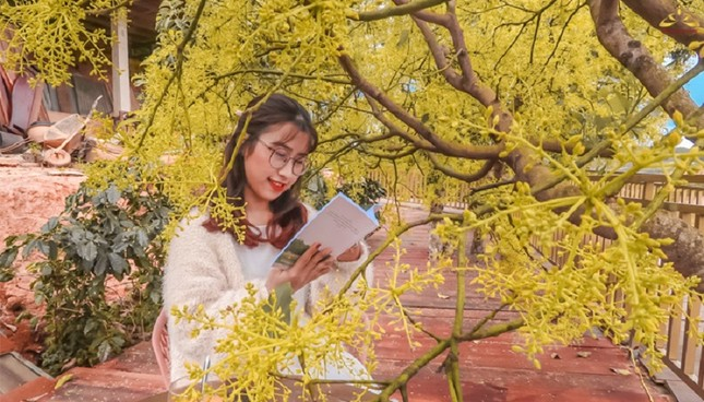 """Xác định tọa độ """"con đường ngôn tình"""" đẹp mộng mơ, được ví như """"Little Korea"""" ở Đà Lạt ảnh 8"""