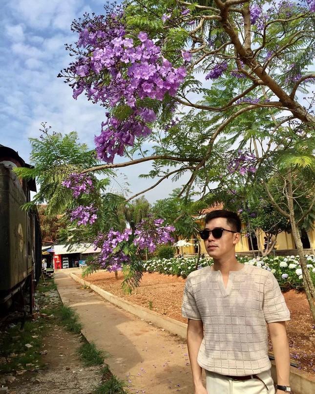 Còn chờ gì nữa mà chưa check-in Đà Lạt ngắm hoa phượng tím đẹp mơ màng ảnh 5
