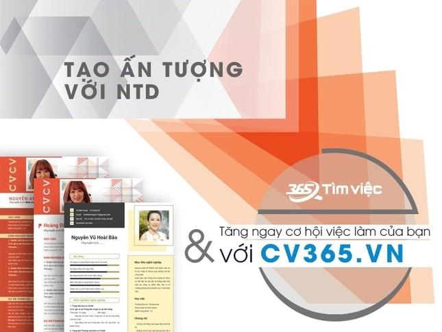 Timviec365.vn - Website tìm việc hiệu quả nhất