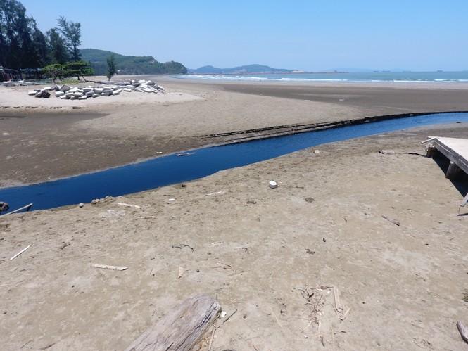 Hồ tôm xả thải gây ô nhiễm nghiêm trọng, người dân trình đơn kêu cứu - ảnh 3
