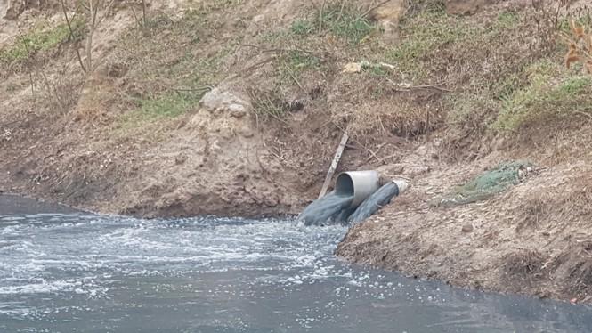 Hồ tôm xả thải gây ô nhiễm nghiêm trọng, người dân trình đơn kêu cứu - ảnh 1