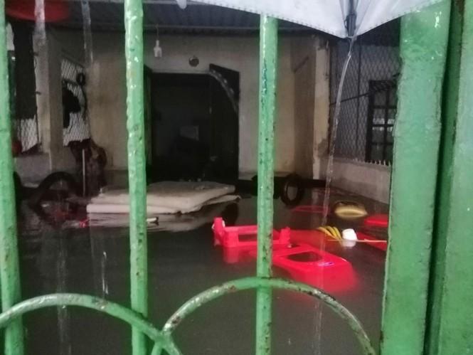 Giải cứu người dân bị mắc kẹt trong biển nước - ảnh 9