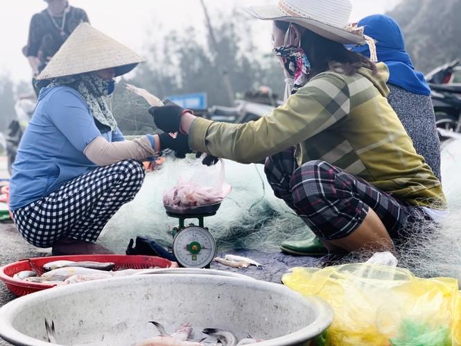 Được mùa cá cháo, ngư dân Hà Tĩnh thu tiền triệu mỗi chuyến ra khơi - ảnh 12