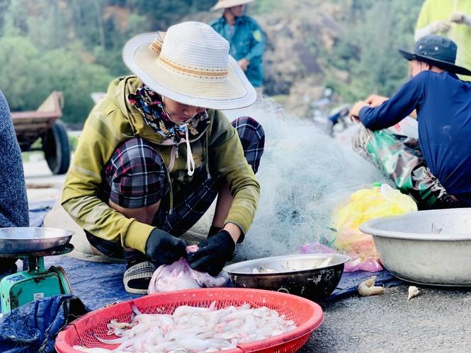 Được mùa cá cháo, ngư dân Hà Tĩnh thu tiền triệu mỗi chuyến ra khơi - ảnh 7