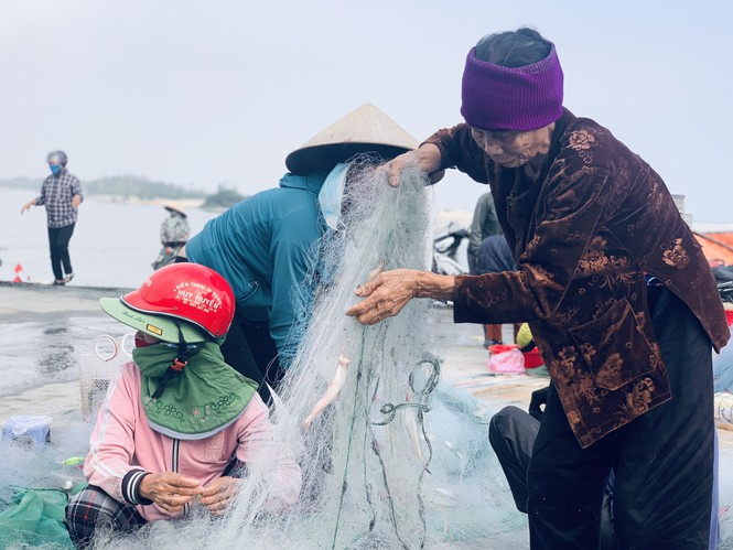 Được mùa cá cháo, ngư dân Hà Tĩnh thu tiền triệu mỗi chuyến ra khơi - ảnh 11