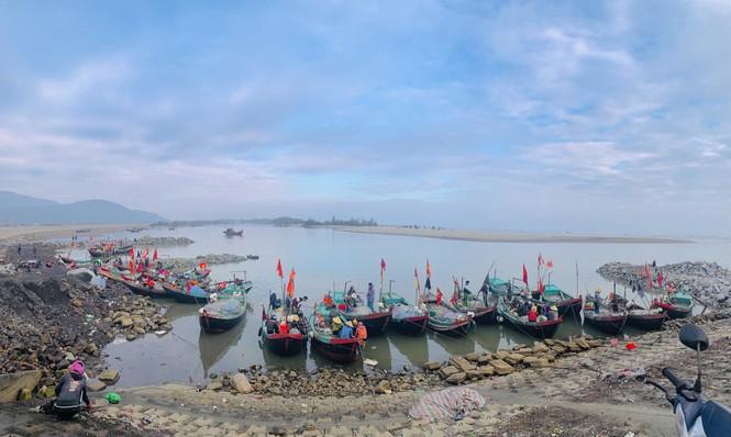 Được mùa cá cháo, ngư dân Hà Tĩnh thu tiền triệu mỗi chuyến ra khơi - ảnh 1