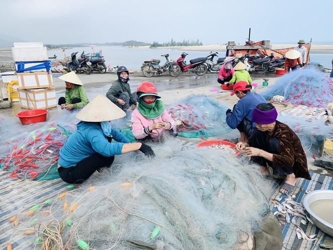 Được mùa cá cháo, ngư dân Hà Tĩnh thu tiền triệu mỗi chuyến ra khơi - ảnh 9