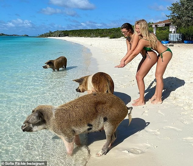 Sofia Richie mặc bikini khoe dáng cực nóng bỏng ở biển - ảnh 3
