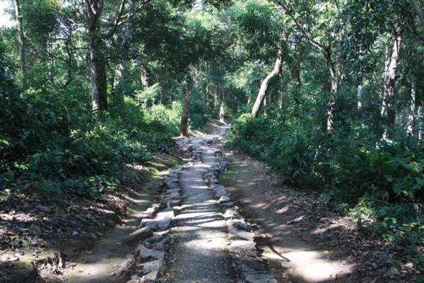 Con đường dẫn vào nơi làm việc của Đại tướng Võ Nguyên Giáp