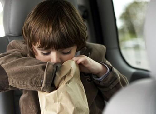 Hãy sẵn sàng những túi nôn khi cần, cùng khăn giấy và nước