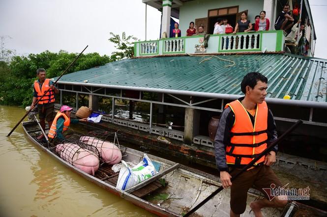 Lũ lớn lịch sử ở Quảng Bình, người dân leo nóc nhà chờ ứng cứu - ảnh 8