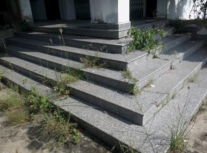 Lãng phí cơ sở trường đại học hàng chục tỷ đồng bỏ hoang nhiều năm - ảnh 14