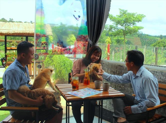 Cà phê thú cưng: Quen mà lạ trên xứ Bazan - ảnh 1