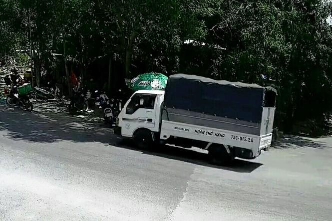 Lái ô tô từ thành phố về xã trộm… 100 bó củi - ảnh 1