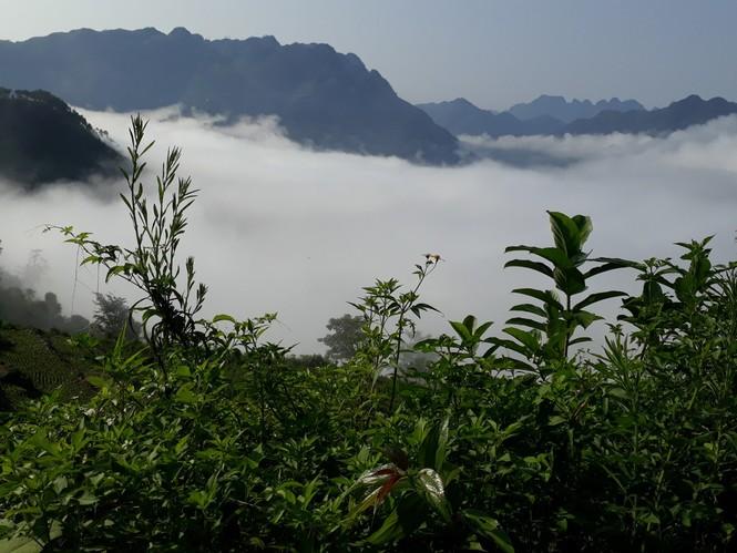 Phượt thủ mê mẩn vẻ đẹp mây phủ trên núi Cổng trời Quản Bạ - ảnh 5