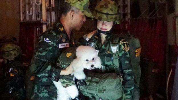 Website hoàng gia Thái Lan sập vì đăng ảnh Hoàng quý phi mặc croptop, lái máy ba - ảnh 7