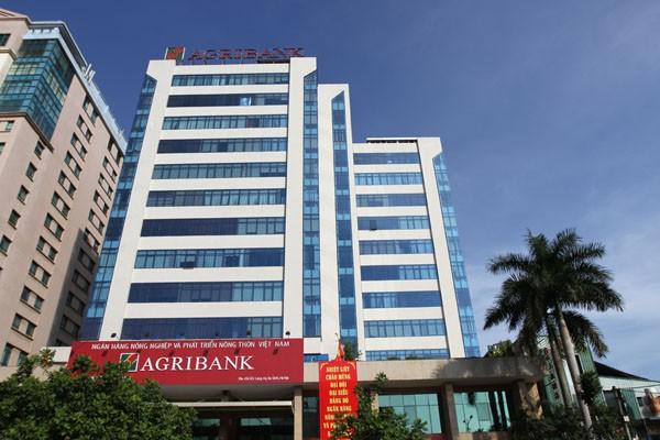Agribank giữ vững vai trò chủ đạo trên thị trường tài chính nông thôn - ảnh 2