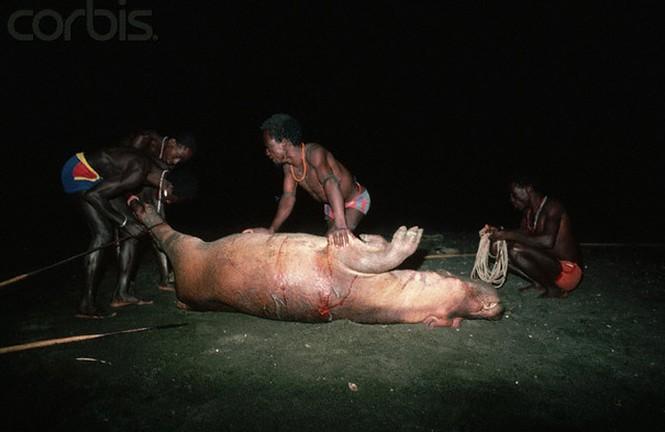 Lạ kỳ bộ tộc dùng cơ thể làm mồi săn hà mã và cá sấu - ảnh 4