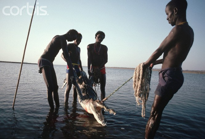 Lạ kỳ bộ tộc dùng cơ thể làm mồi săn hà mã và cá sấu - ảnh 3