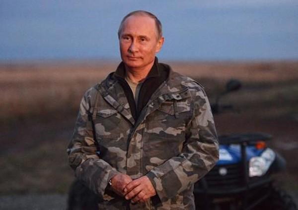 Putin chăm sóc ngựa hoang quý hiếm - ảnh 3