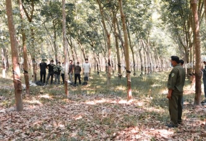 Tây Ninh bắt giữ 16 người Trung Quốc nhập cảnh trái phép - ảnh 1
